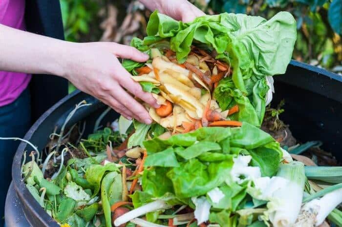 Sampah Organik Anorganik Pengertian Sumber Jenis