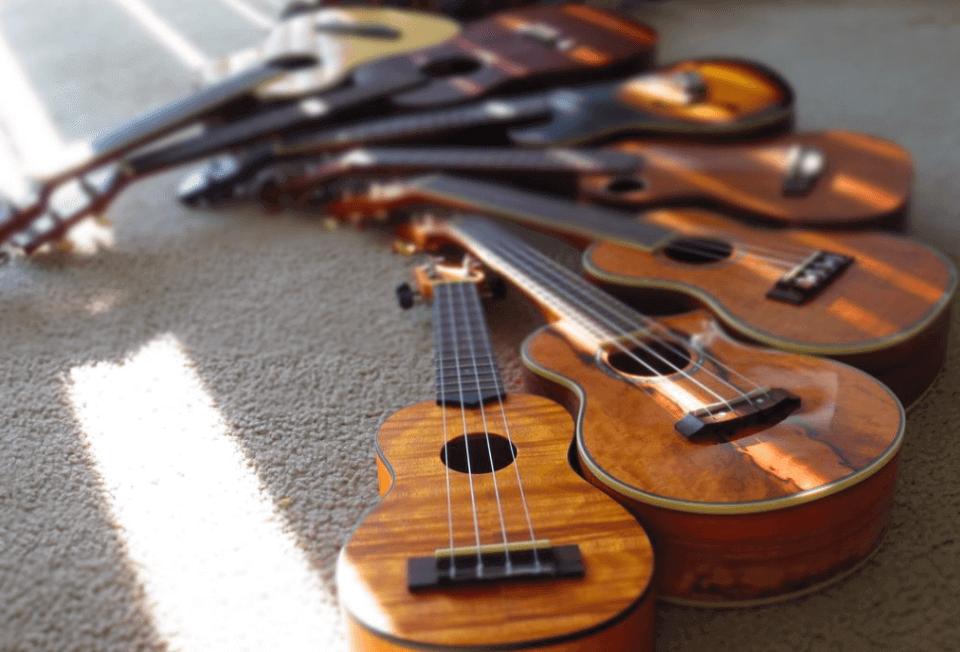23 Alat Musik Petik Beserta Nama Penjelasan Dan Gambarnya
