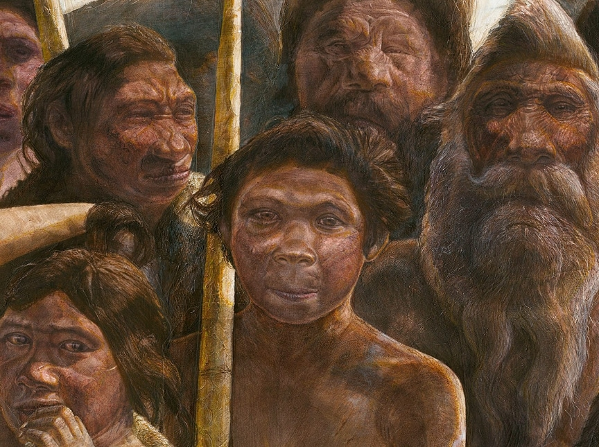 Jenis Jenis Manusia Purba Di Indonesia Ciri Ciri Sejarah Gambar