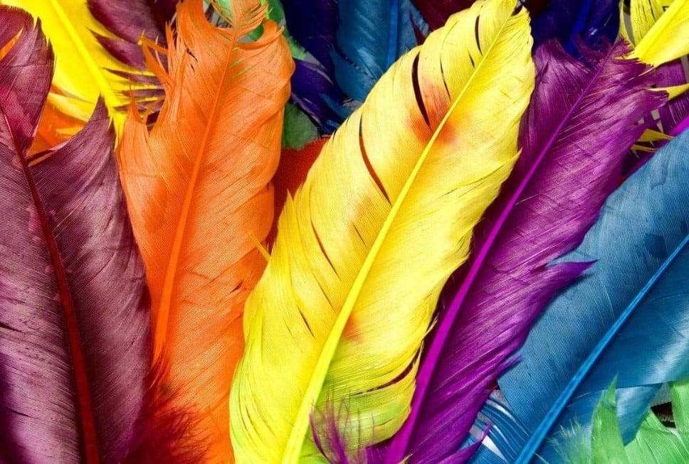 Arti Warna Bagi Psikologi Manusia ?