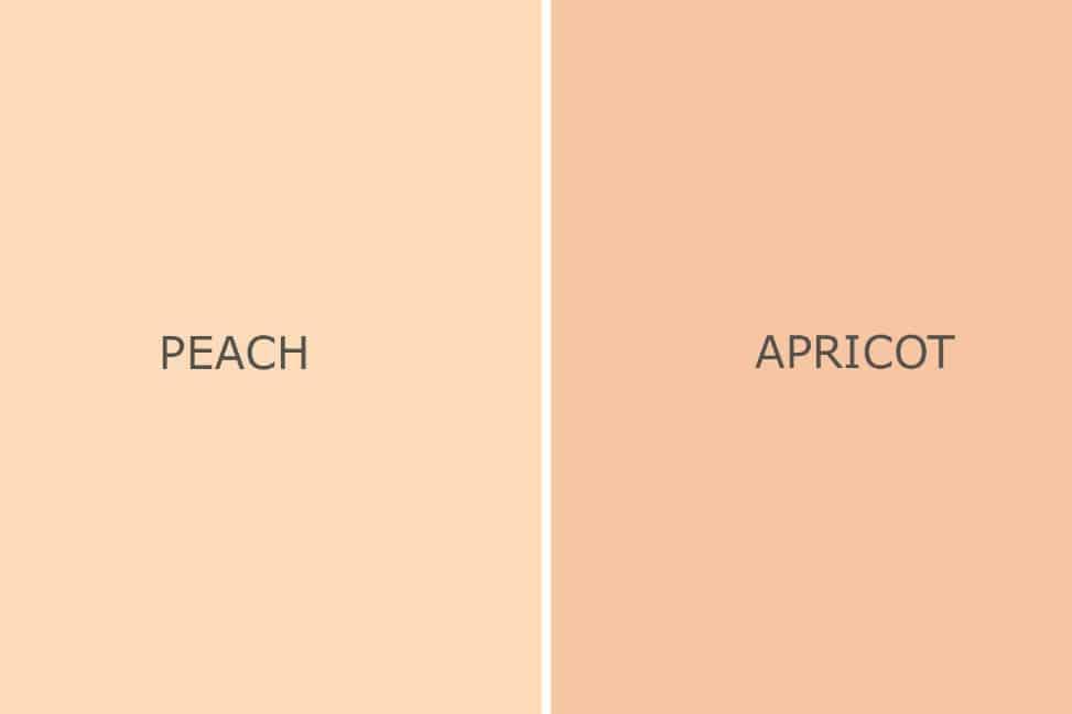 Jenis jenis Campuran Warna yang wajib kamu ketahui