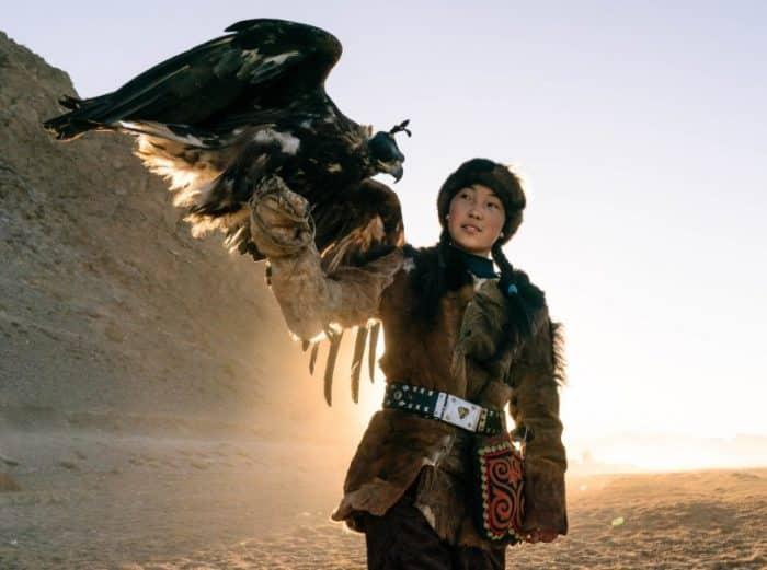 Burung Elang Cara Merawat Pakan Harga Jual Lengkap