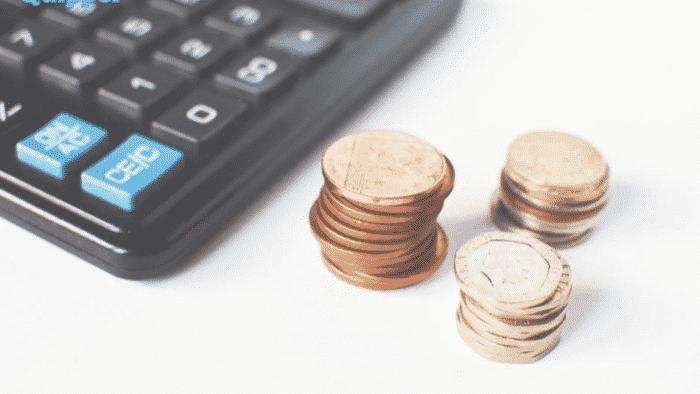 Pendapatan dan Keuntungan Usaha Tanaman Hias