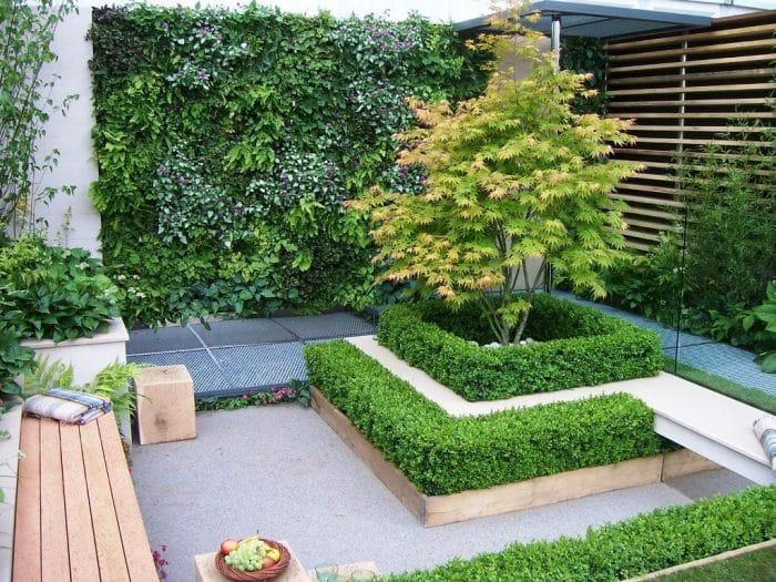 Desain Rumah Belakang Indoor Plants