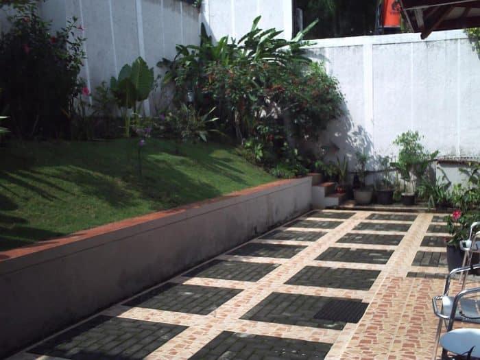 Desain Rumah Belakang dengan Rumput Halus dan Pot Tanaman